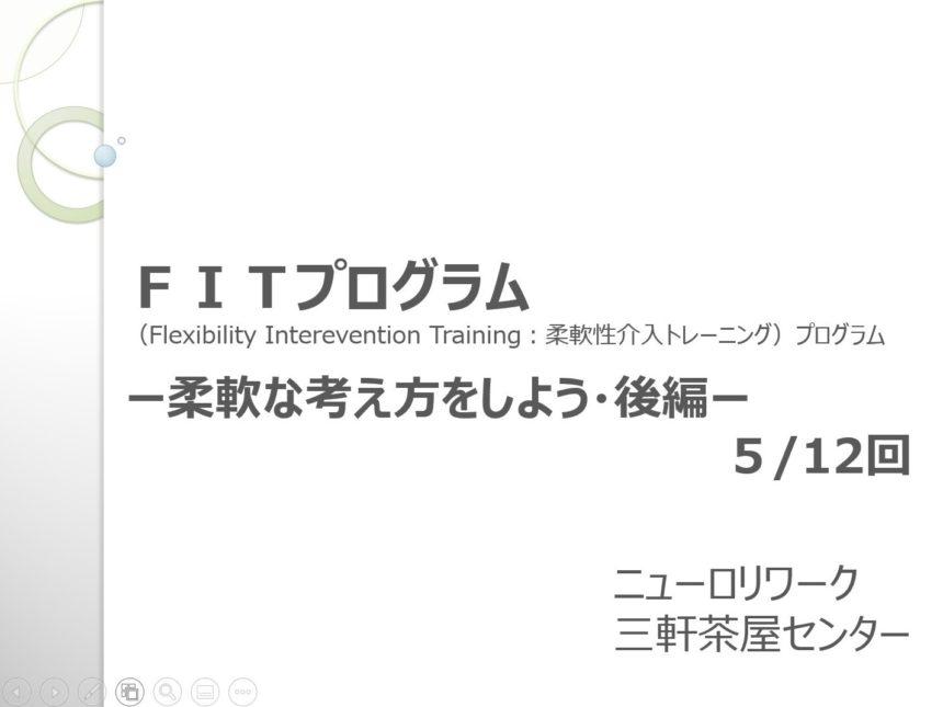 FITプログラム